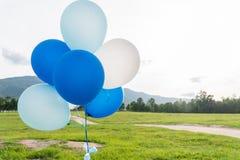 Голубые и белые воздушные шары партии Стоковое Изображение