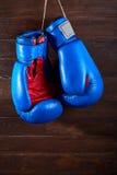 Голубые и красные перчатки бокса вися на деревянной стене Стоковые Фото