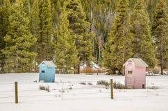 Голубые и розовые уборные во дворе Стоковая Фотография