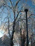 Голубые небеса после шторма льда стоковое фото rf