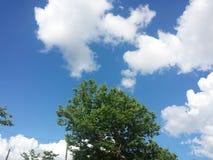 голубые небеса Стоковое Изображение RF