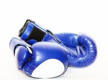 Голубые перчатки бокса на белой предпосылке лыжа иллюстрации оборудования расцветки резвится вода Стоковые Изображения