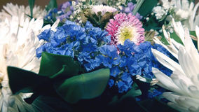 Голубые полевые цветки и красочная хризантема стоковая фотография
