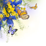 Голубые радужки с желтыми маргаритками Стоковое Изображение