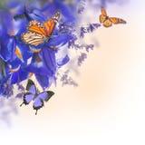 Голубые радужки с желтыми маргаритками Стоковые Фотографии RF