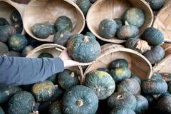 Голубые тыквы в корзинах бушеля Стоковая Фотография