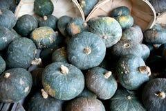 Голубые тыквы в корзинах бушеля Стоковое Изображение RF