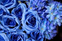 голубые цветки Стоковые Фото