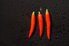 голубые чили пылают горячий излишек красный цвет перца Стоковая Фотография RF