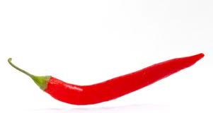 голубые чили пылают горячий излишек красный цвет перца Стоковое Фото