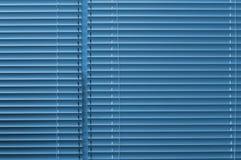 голубые штарки Стоковое Изображение RF