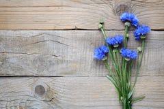 Голубые cornflowers на древесине Стоковые Фотографии RF