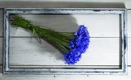Голубые wildflowers в старой рамке Стоковые Фотографии RF