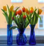 3 голубых вазы с тюльпанами в windowsill Стоковое Фото