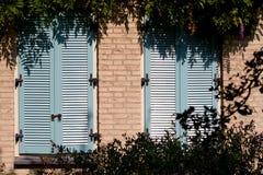 2 голубых деревянных штарки Стоковое Изображение