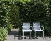 2 голубых места в саде Стоковые Изображения
