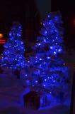 2 голубых рождественской елки на снеге светов ночи на земле Стоковые Фото