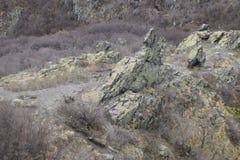 ` Голубых утесов ` природного парка - Болгария, Sliven Стоковые Изображения RF