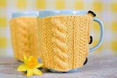 2 голубых чашки в желтых свитере и цветке Стоковое Фото