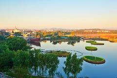 Голубь гнездится восход солнца парка Стоковые Фотографии RF