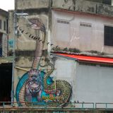 Голубь и граффити кобры и льва короля на стене старого здания развязности Стоковое фото RF