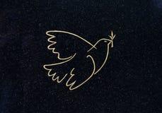 Голубь мира на могиле стоковые изображения