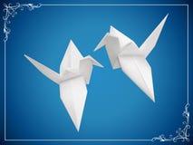 Голубь мира Стоковые Фотографии RF