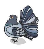 Голубь рисует внимание иллюстрация вектора