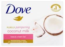 Голубь чисто изнеживая молоко кокоса - мыло бара красоты cream изолированное на белизне стоковая фотография rf