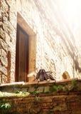 3 голубя целуя в Италии Стоковое фото RF