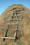 Грабли и лестницы к стогу сена Стоковое Изображение RF