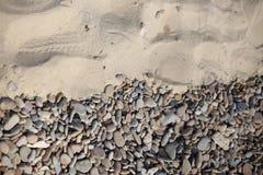 Гравий и песок предпосылки Стоковое Изображение RF