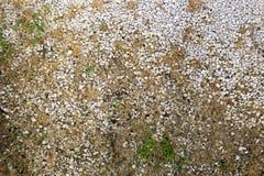 Гравий и трава стоковое фото rf