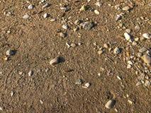 Гравий, камешки и предпосылка крупного плана песка безшовная стоковые изображения