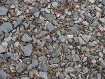 Гравий с коричневой сухой предпосылкой листьев стоковые фотографии rf