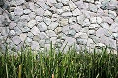 гравий травы Стоковое Фото