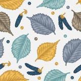 Гравировать безшовную картину листьев и семян березы Стоковые Фотографии RF