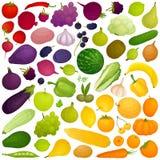 Градиент вектора красочный от еды иллюстрация вектора