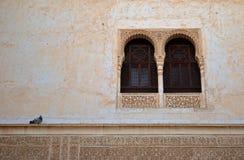 Гранада - голубь и окно - Альгамбра, Гранада, Испания стоковая фотография