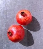 Гранатовое дерево Стоковое фото RF