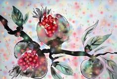 Гранатовые деревья Стоковые Изображения RF