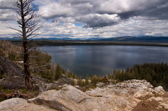 грандиозное teton национального парка озера jenny Стоковое Фото