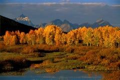 грандиозное teton национального парка Стоковое фото RF