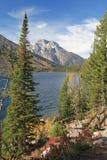 грандиозное teton np озера jenny Стоковое Изображение