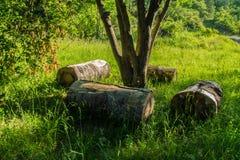 Грандиозные viopis, drome, Франция стоковое изображение