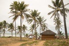 Грандиозный бар пляжного комплекса палладиума стоковые изображения rf