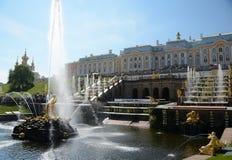 Грандиозный переулок каскада и фонтанов в Peterhof Стоковые Фото