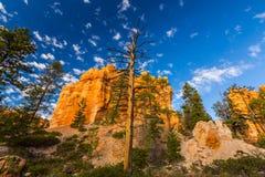 Гранд-каньон, Аризона, пейзаж перспективы в осени на восходе солнца Стоковая Фотография RF