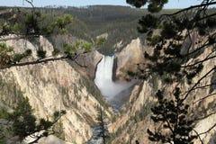 Гранд-каньон национального парка Йеллоустона стоковое изображение rf