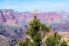 Гранд-каньон, Соединенные Штаты Америки стоковые фотографии rf
